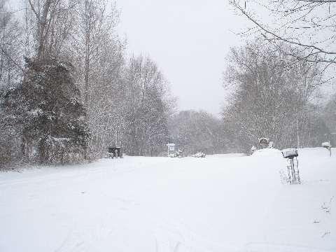 Winter Wonderland 2-10-10