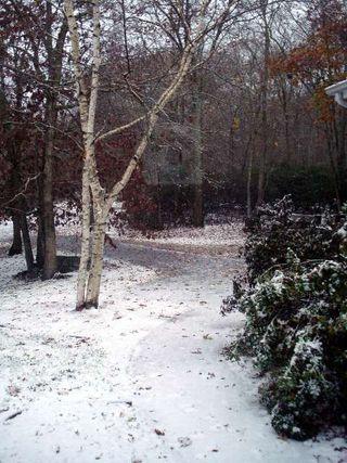 2010 1st Snow Large Web view