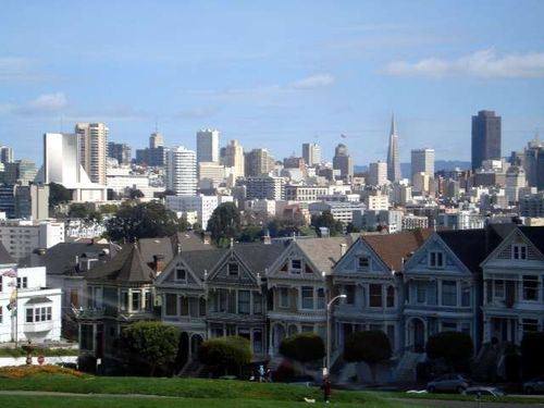 Painted Ladies1