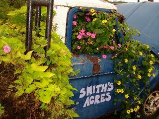 Smith Acres 4