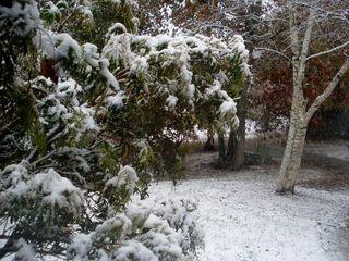 Oct Snow1