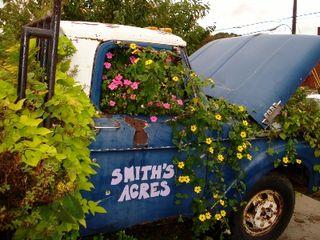 Smith Acres 3