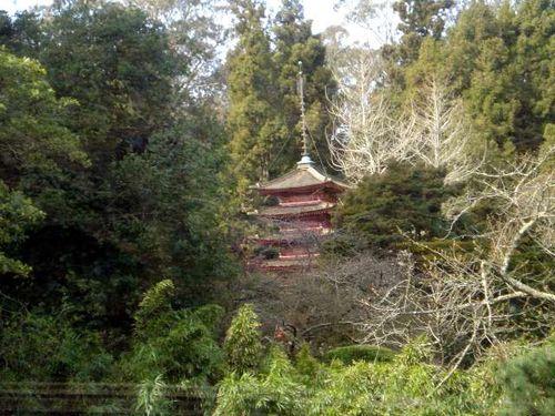 Japanese Tea Garden1webview